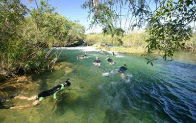 rio com mergulhadores em Bonito